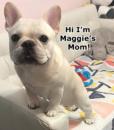 mom-words